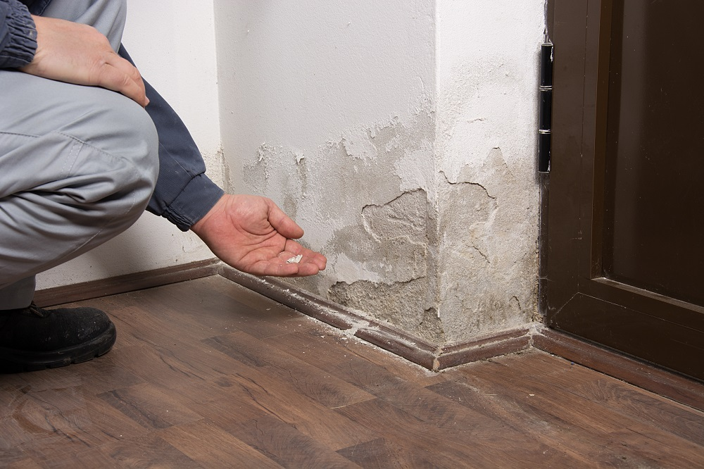 Common DIY Water Damage Cleanup Mistakes to Avoid - Integrity Restoration