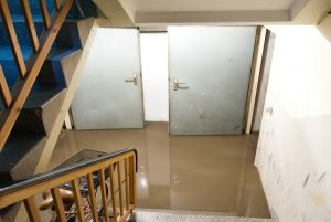 Flooded basement in home